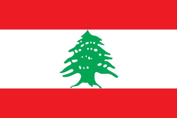 Paczki i przesyłki do Libanu