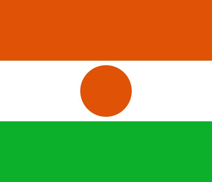 Paczki i przesyłki do Nigru