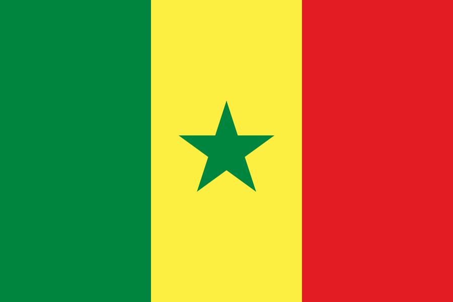 Paczki i przesyłki do Senegalu