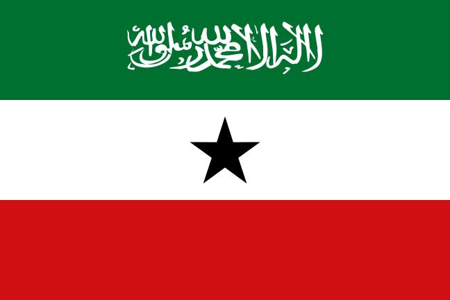 Paczki i przesyłki do Somalilandi