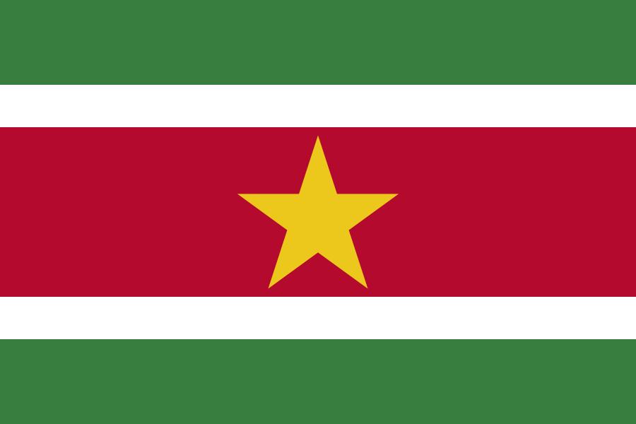 Paczki i przesyłki do Surinamu