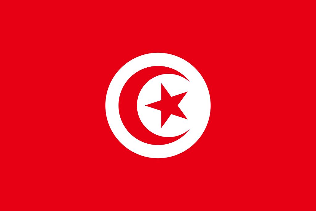Paczki i przesyłki do Tunezji
