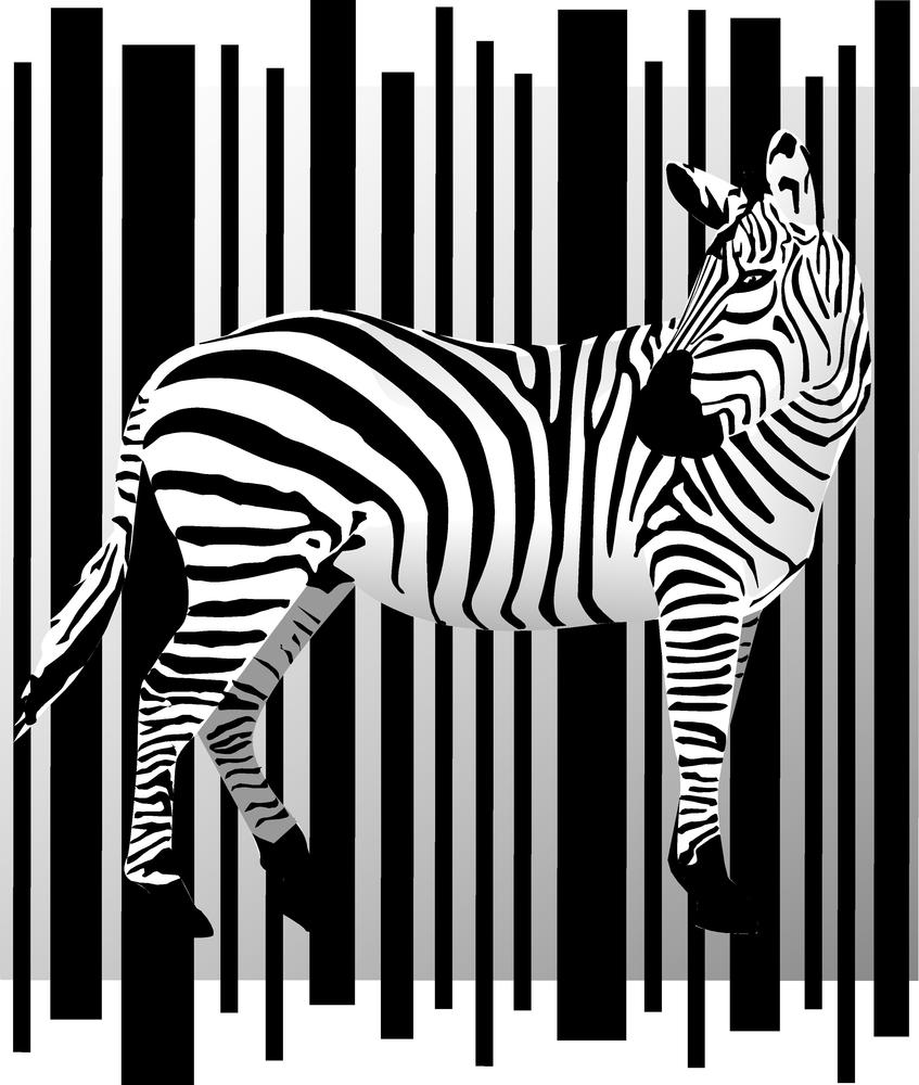Drukarka etykiet typu zebra